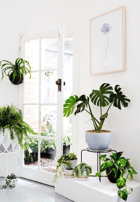 Kleine tuin binnen buiten