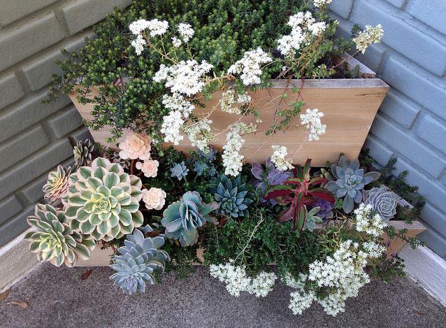 kleine tuin hoekbloembak